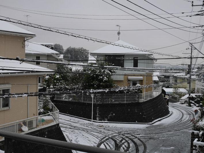 人生初体験の11月の初雪に震える:11・24_c0014967_18404120.jpg