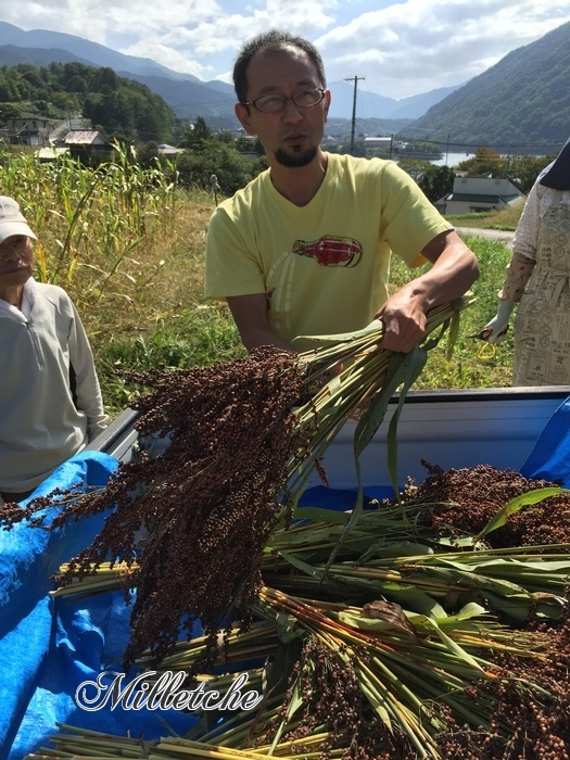 雑穀シコクビエの収穫体験 @長野県伊那市_c0220172_13505029.jpeg