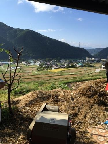 雑穀シコクビエの収穫体験 @長野県伊那市_c0220172_13524785.jpeg