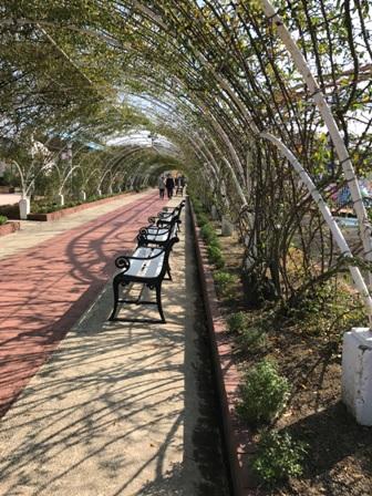 香椎花園_b0214473_83279.jpg