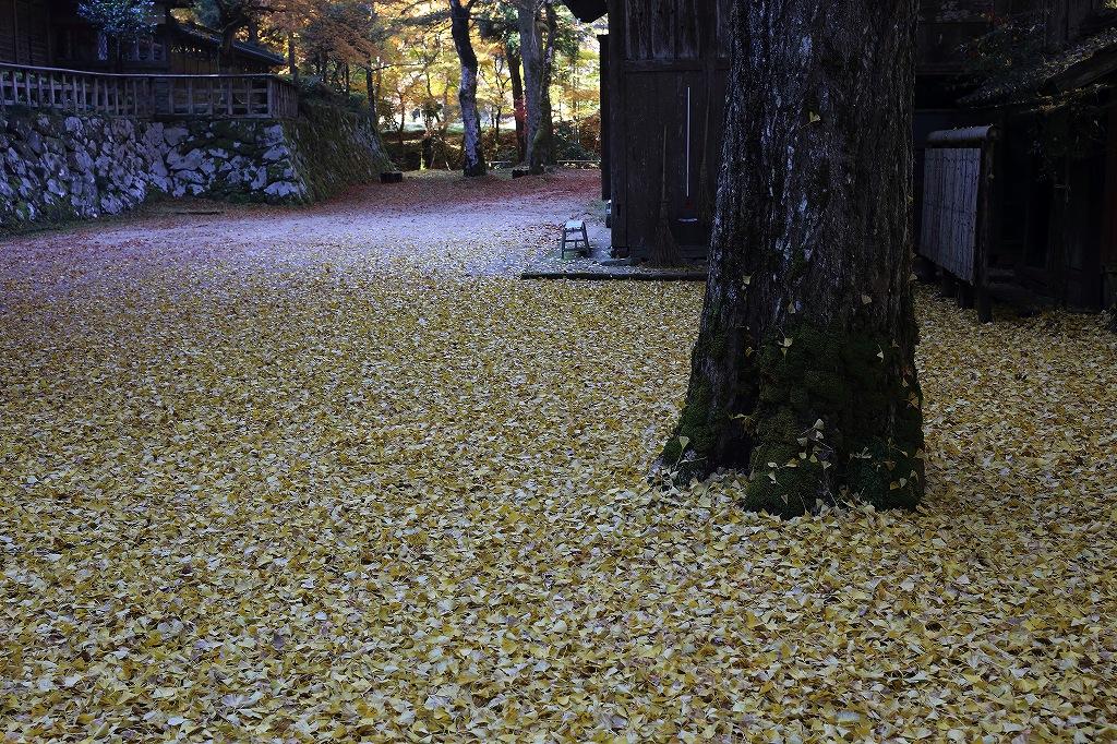 綾部市黒谷 熊野神社_a0170082_19124791.jpg