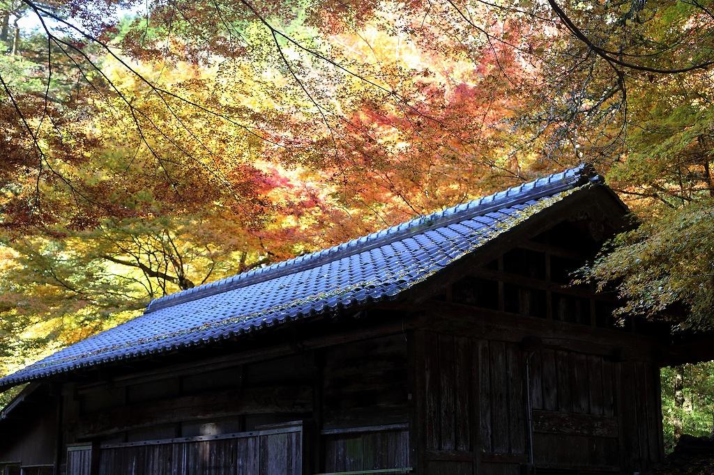 綾部市黒谷 熊野神社_a0170082_19125399.jpg
