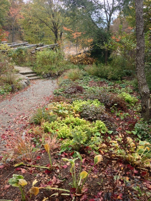八ヶ岳 en automne 2016        ガーデン合宿 ①_b0167282_00100020.jpg