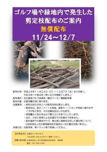 伐採木・剪定枝の無料配布について_d0338682_11243539.jpg