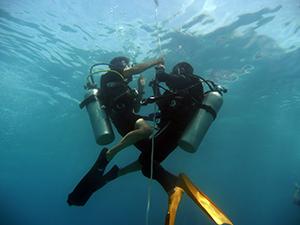 海洋実習_f0144385_1756261.jpg