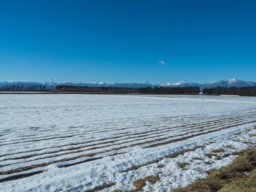 厳しい冷え込みで快晴・・中札内村の農村風景と日高山脈_f0276498_23384020.jpg
