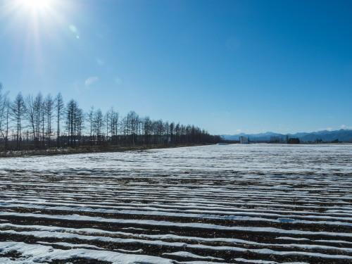 厳しい冷え込みで快晴・・中札内村の農村風景と日高山脈_f0276498_23390050.jpg