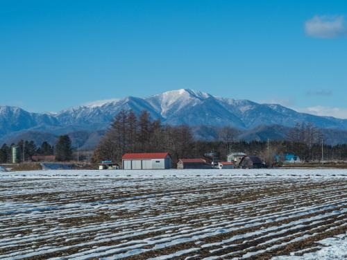 厳しい冷え込みで快晴・・中札内村の農村風景と日高山脈_f0276498_23394744.jpg