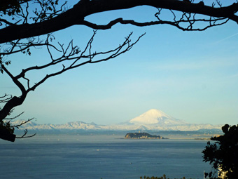 今朝の富士は真っ白でした。_c0195909_10534338.jpg
