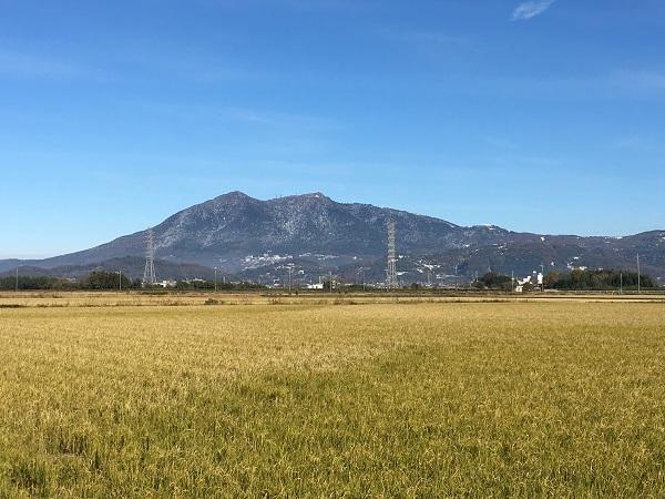 今朝の筑波山と馬目さんの器_b0100229_16181803.jpg