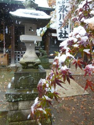 autumn leaves×snow   観測史上初!_a0165160_09103583.jpg