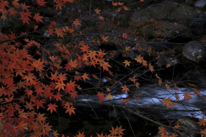 穴場の桐生川(➁)_e0305388_08443358.jpg