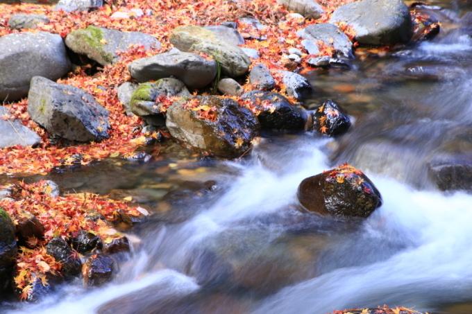 穴場の桐生川(➁)_e0305388_08472824.jpg