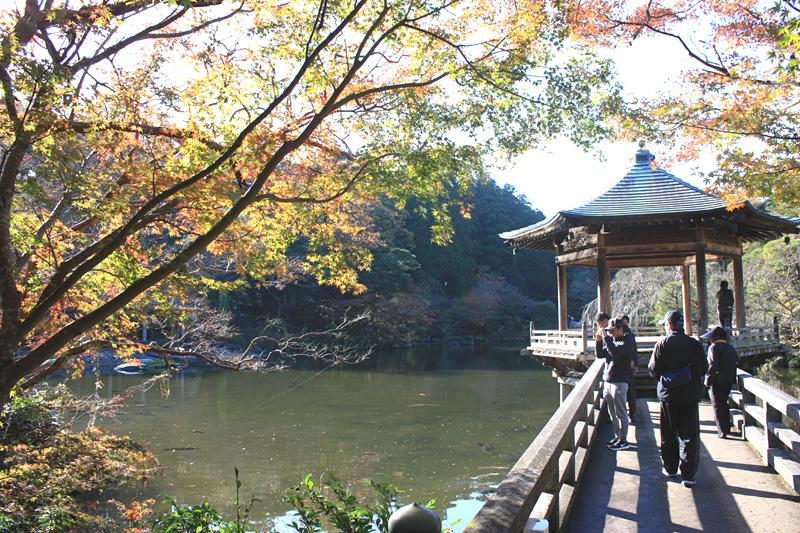 成田山の紅葉_b0114798_17511137.jpg