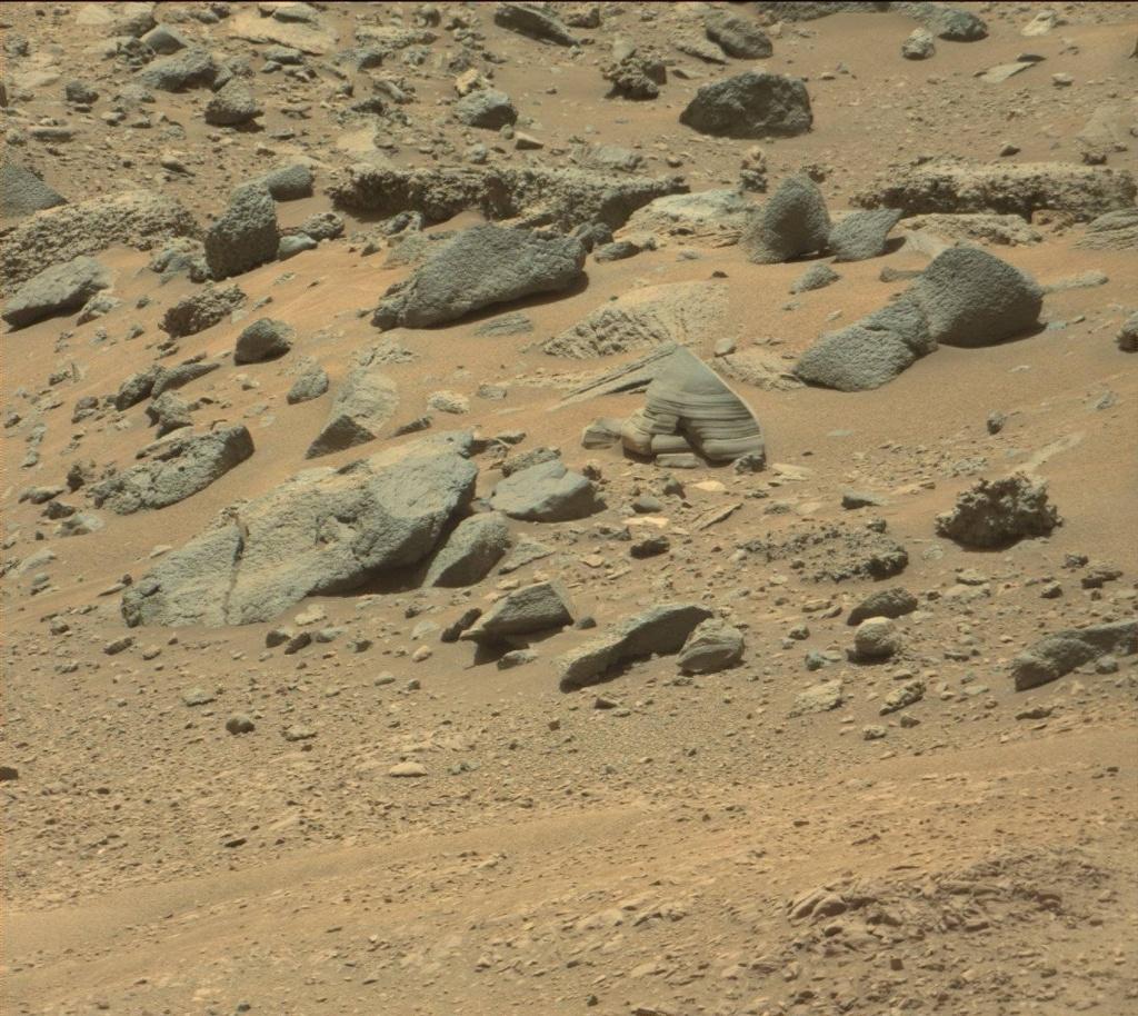 ついに火星でエイリアンの姿が捉えられた!?2:「NASA元画像から復元した昆虫型宇宙人とは?」_a0348309_11461795.jpg