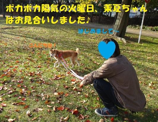 f0121712_14431190.jpg