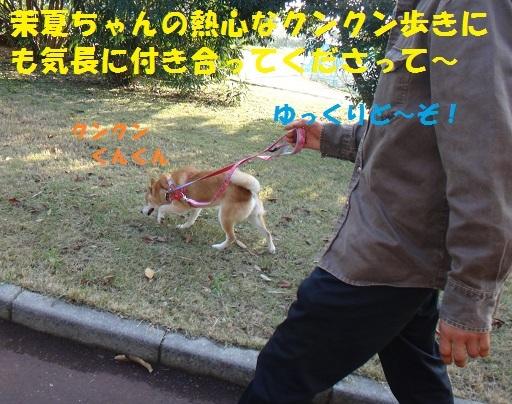 f0121712_14432442.jpg