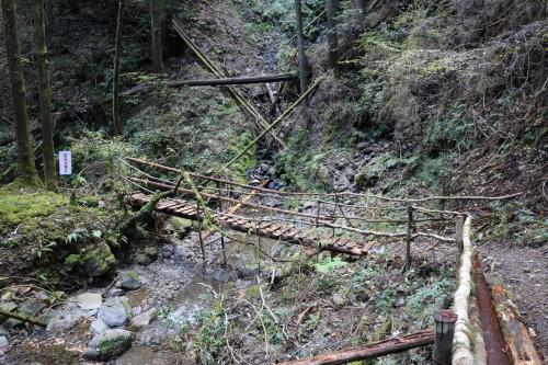木の吊り橋_e0101917_12082801.jpg