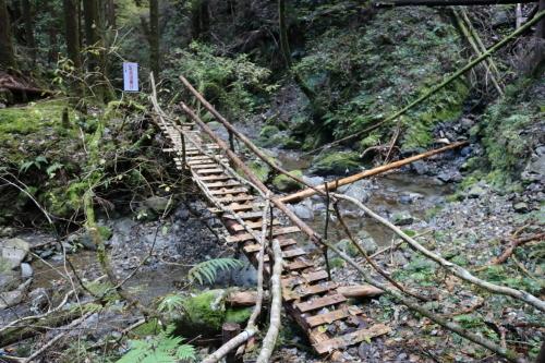 木の吊り橋_e0101917_12200553.jpg