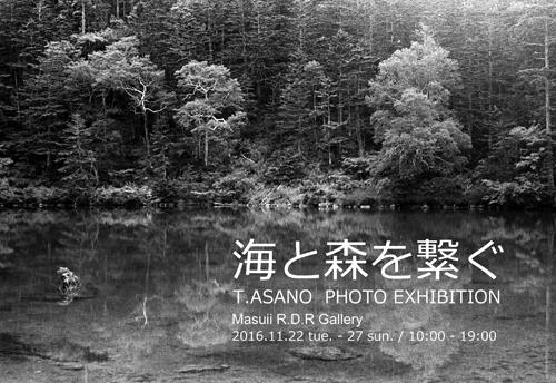 海と森を繋ぐ~写真展~_d0085018_109652.jpg