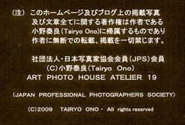 a0217029_17100586.jpg