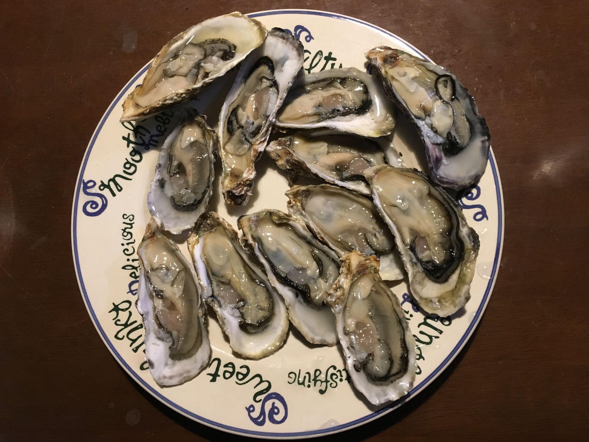牡蠣を買いに行ってきました_f0128542_1542052.jpg