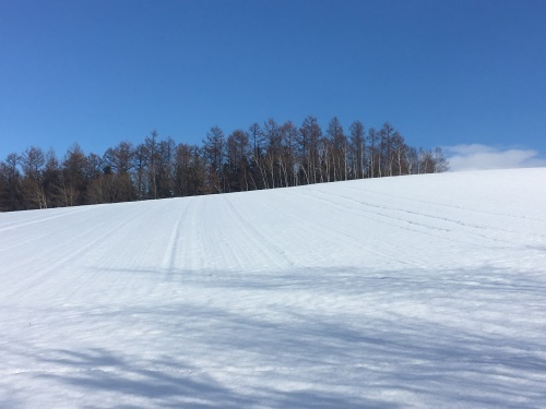 冬支度、、でももう冬_e0326953_20393118.jpg