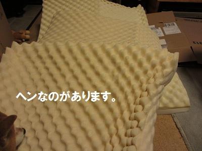 f0068501_2315953.jpg