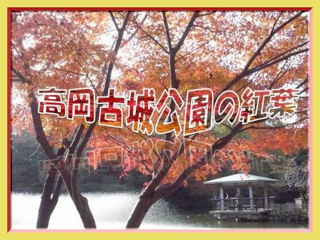 f0132006_1256172.jpg