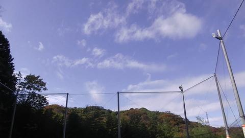 ゆるUNO & 夜UNO ダブルヘッダー 11/23(水・祝)  at UNOファーム_a0059812_15125436.jpg