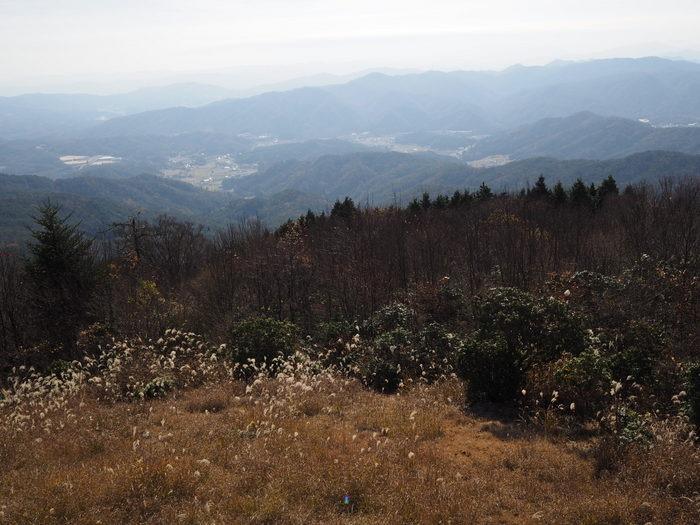 叶木山(かんのきやま)・鷹ノ巣山_c0116915_015520.jpg
