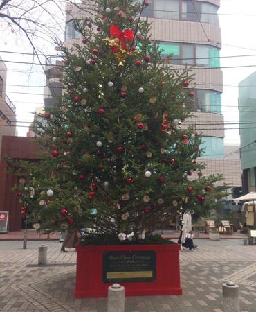 自由が丘のクリスマスツリーはここ_a0275527_18303570.jpg