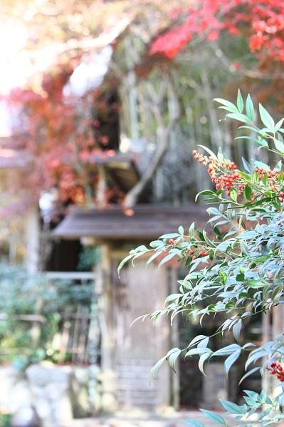 山のフレンチレストラン  Village_e0211636_1934445.jpg