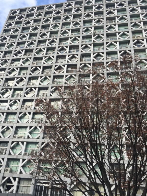 リケジョになりたい!(早稲田大学理工学部キャンパスツアー)_c0366777_22224930.jpg