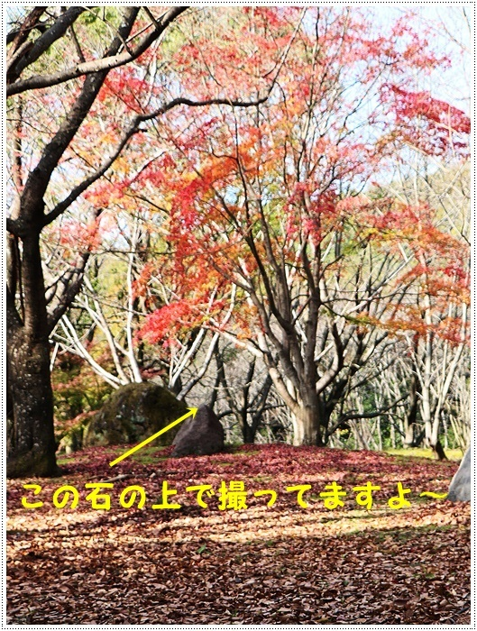b0175688_20163441.jpg