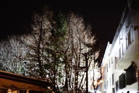 雪景色の夜_e0120896_07181551.jpg