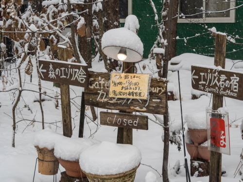 エゾリス君は冬眠しませんが・・宿とカフェ11/27〜12/15休館します!_f0276498_10543506.jpg