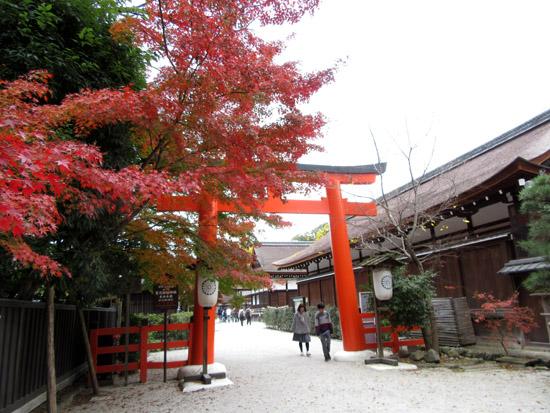 紅葉探訪22 下鴨神社など_e0048413_19173754.jpg