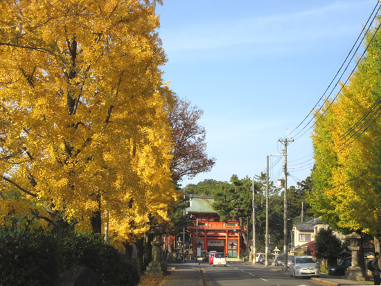 紅葉探訪22 下鴨神社など_e0048413_19191041.jpg