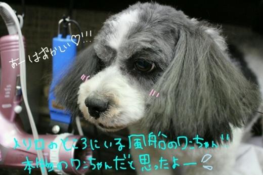 駅弁_b0130018_22321013.jpg