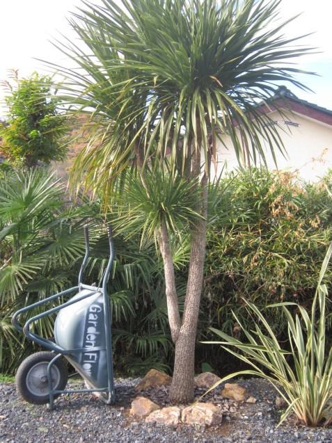 群馬県太田市・栃木県足利市近郊お庭の施工専門店ガーデンフローHP`WWW.garden-Flow.net'アドレスをペイントしてみました。 _e0361918_10524547.jpg