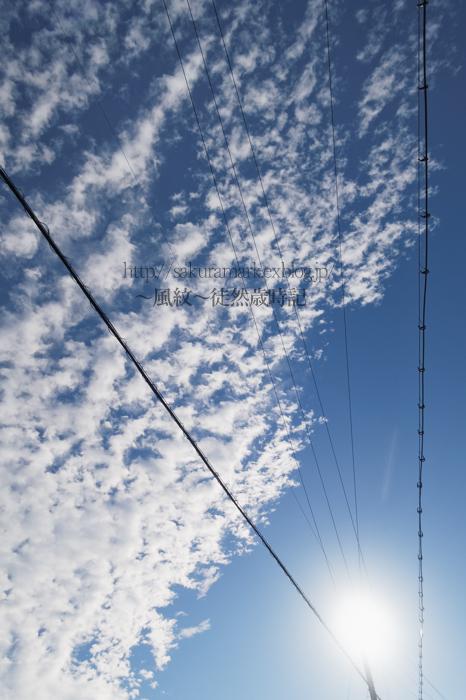 ちぎれゆく高積雲。_f0235723_20573912.jpg