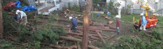 土佐の森方式による森林整備活動システム(事例集)_a0051539_15531070.png