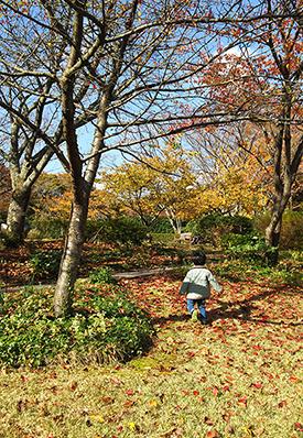 2歳最後の思い出 箱根旅行_a0275343_15355375.jpg