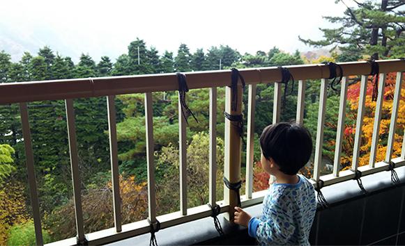 2歳最後の思い出 箱根旅行_a0275343_1672927.jpg