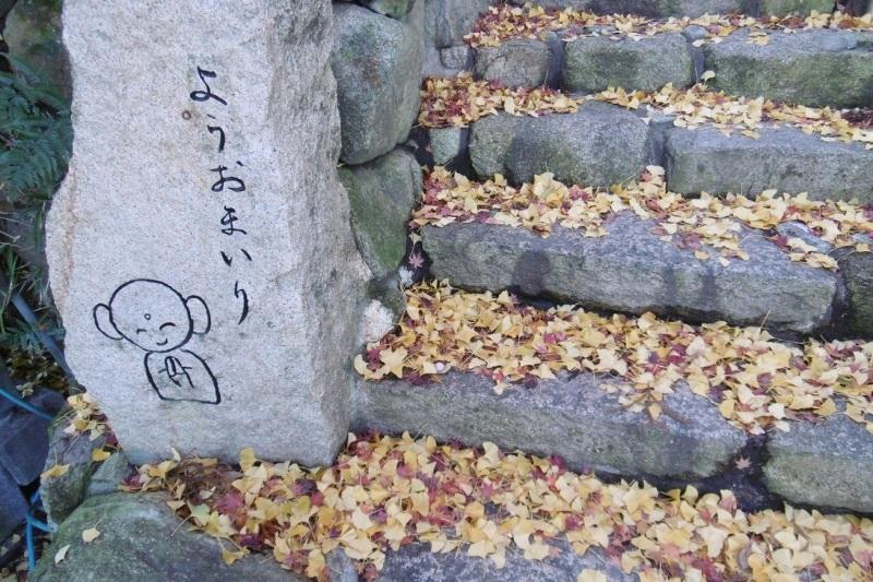 落ち葉の季節_f0205367_16565330.jpg
