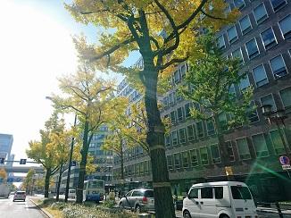 11月ラストは西日本からお届けです!_d0091909_17173116.jpg