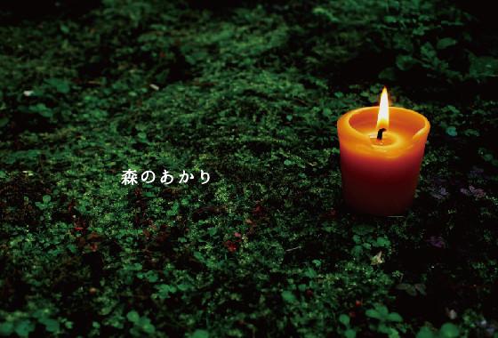 森のあかり展 2016_b0237338_16255540.jpg