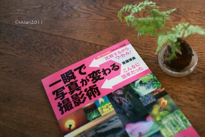 KALEIDO COFFEE(カレイド コーヒー) ~隠れていないけれど隠れ家のようなコーヒー店~_e0227942_22021329.jpg