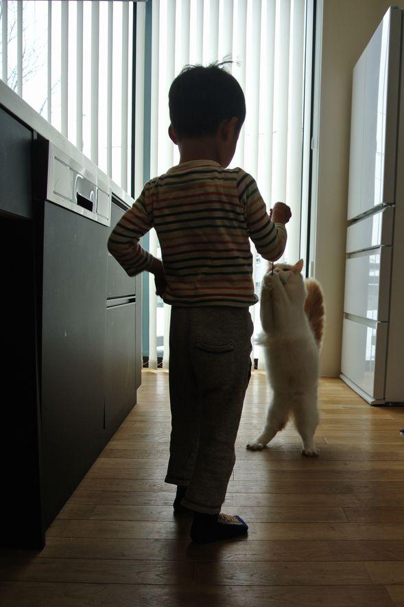 加須の家_d0106648_18184388.jpg
